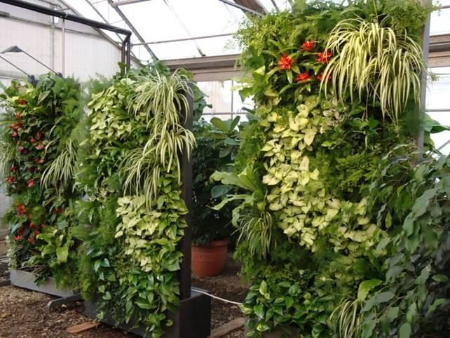Pareti Giardini Verticali: Pareti giardini verticali parete verde esterna rea...
